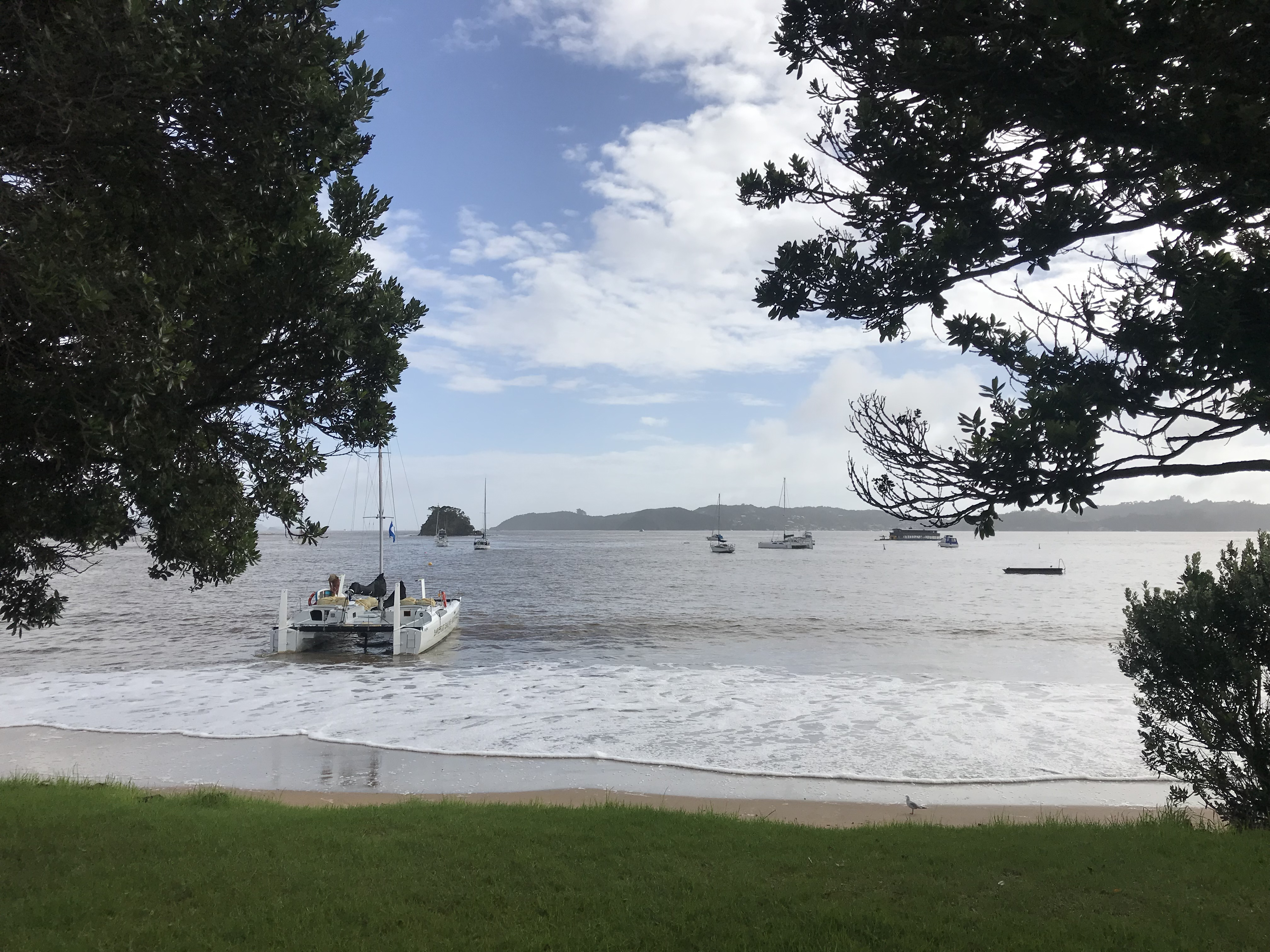 View from Paihia broad walk